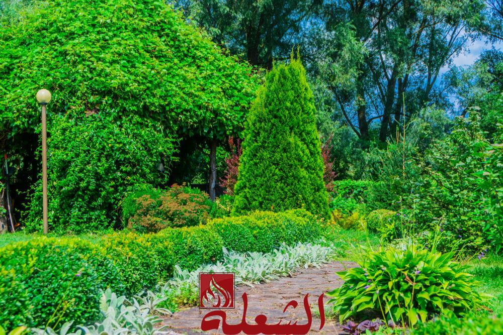 شركة تصميم حدائق بتبوك