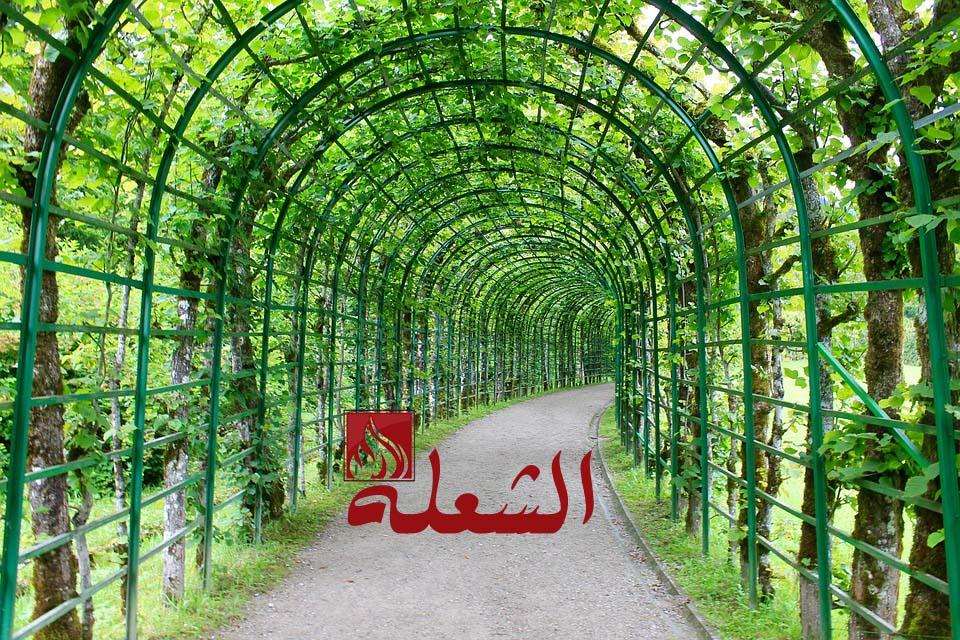 شركة تصميم حدائق بالخبر