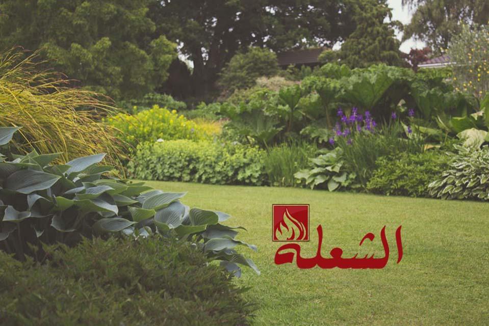 شركة تصميم حدائق بالاحساء