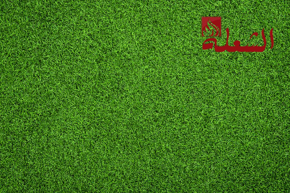 شركة تركيب وتوريد عشب طبيعي بخميس مشيط