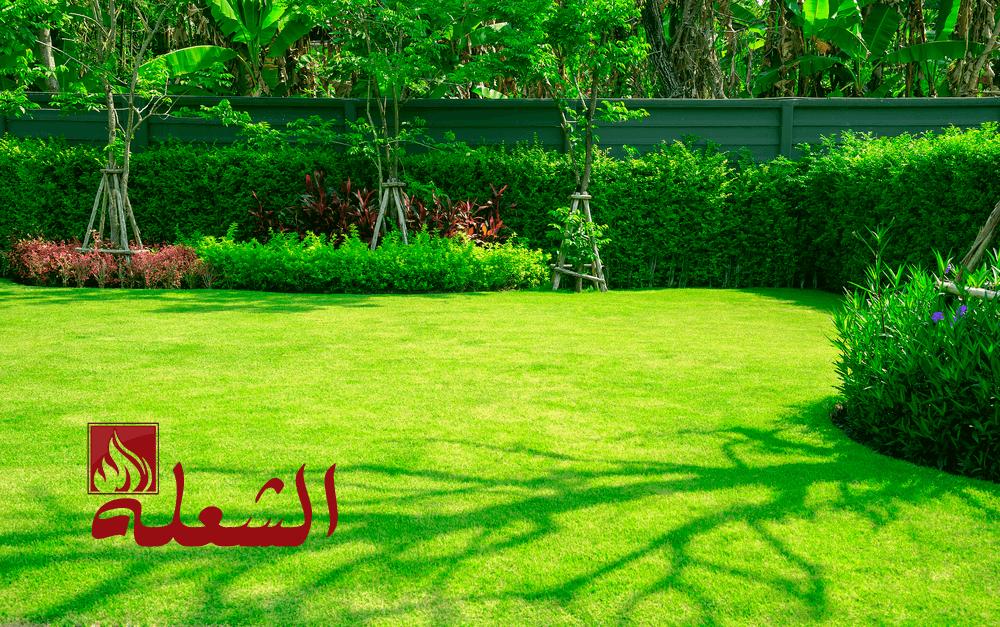 شركة تصميم حدائق ببريدة