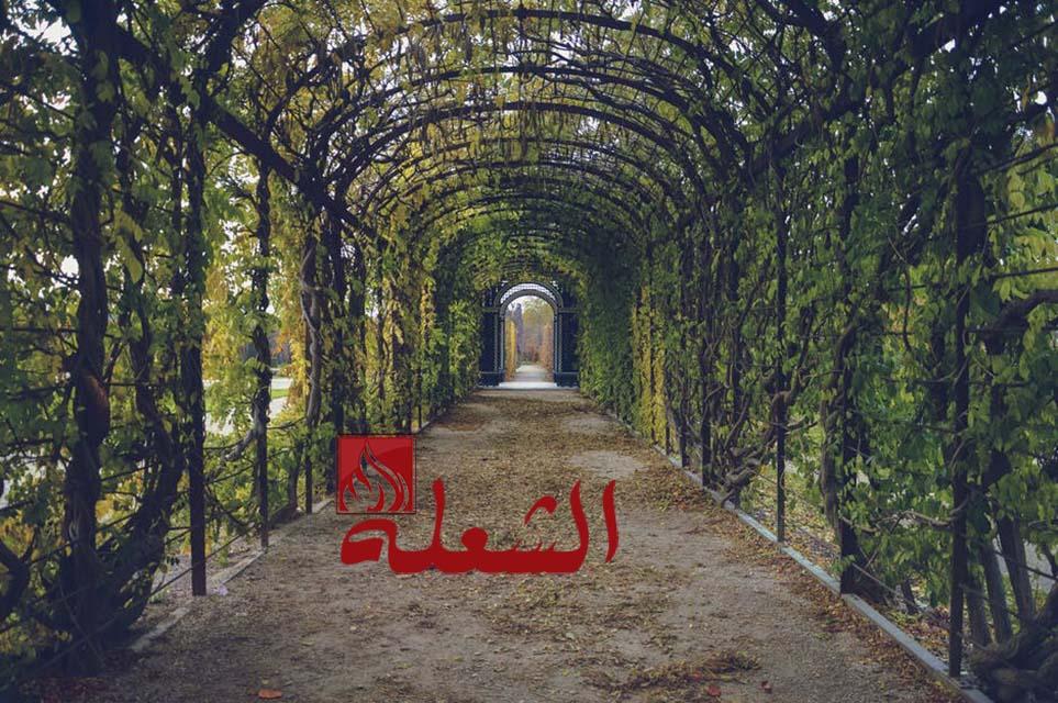 شركة تصميم حدائق بالرياض